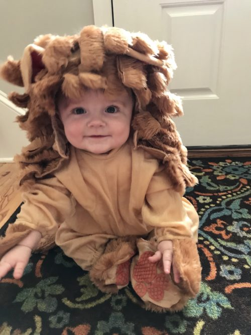 The Cutest Cowardly Lion!