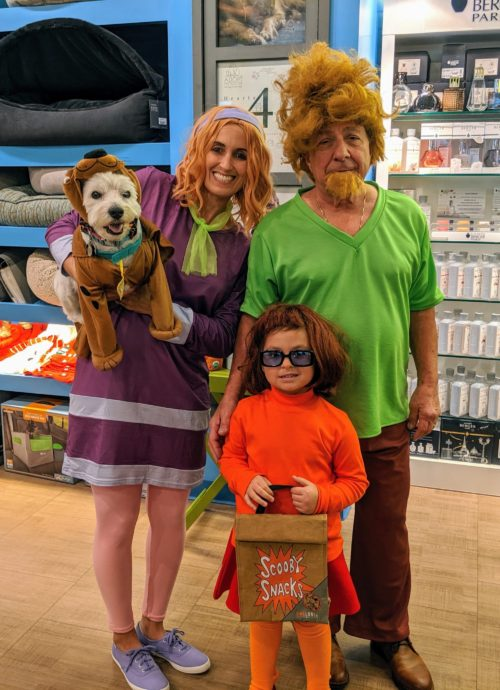 Scooby Doo and the Gang