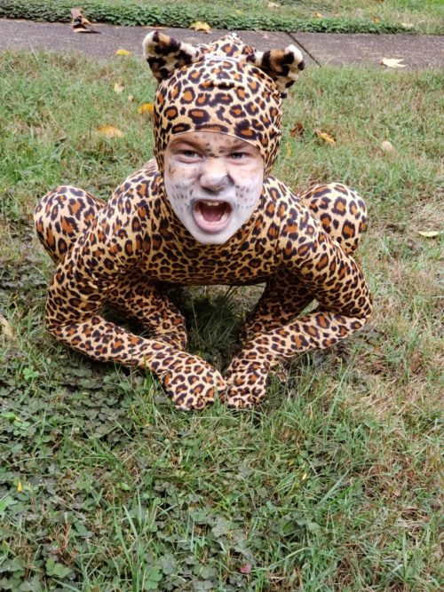 Katie Ann the Leopard