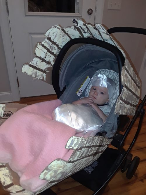 Baby Pearl in a Clam Shell