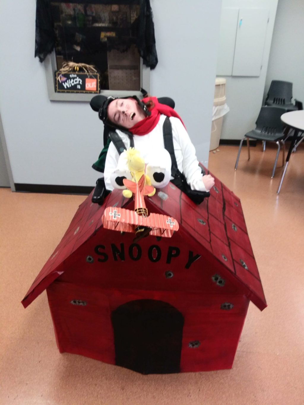 Snoopy Fighting Red Baron